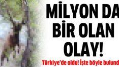 Milyonda bir olan olay Türkiye'de oldu