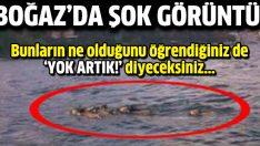 İstanbul Boğazı'nda şok eden olay!