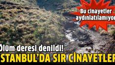 İstanbul'da seri cinayetler
