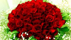 Güllere 14 Şubat zammı