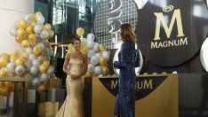 Altın Kelebek ödülleri – Altın Kelebek 2014 ödülleri