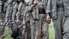 PKK'ya bomba eğitimi ABD'den
