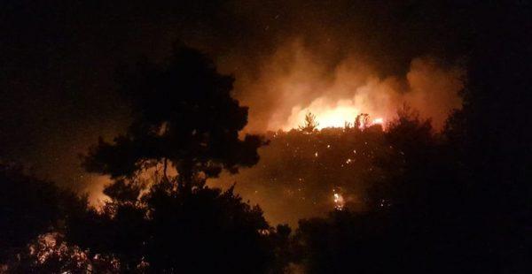 Antalya'daki yangın 4 mahalleyi tehdit ediyor