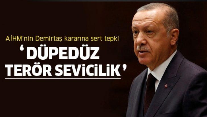 Cumhurbaşkanı Erdoğan'dan AİHM'e sert tepki!