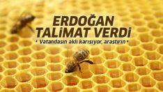 Cumhurbaşkanı Erdoğan'dan sağlıklı beslenme konusunda araştırma talimatı