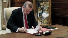 Cumhurbaşkanı kritik atamaları imzaladı