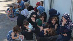 Hatay Belediye Başkanı: Suriyeliler evine dönsün! Burada kalıcı olmalarını istemiyorum