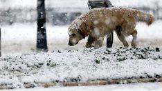 Kar yağışı beklenirken, Meteoroloji'den gelen son tahminler şaşırttı!