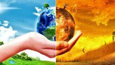 İklim değişikliği, doğal yaşamın tamamen yok olmasına yol açabilecek boyutta!