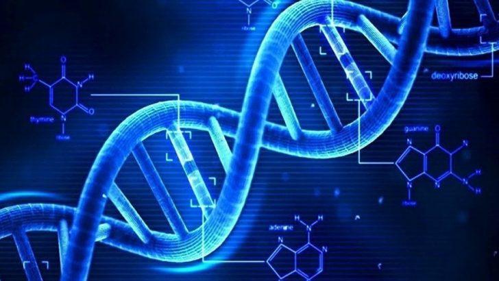 Uçağa binmek DNA'nın kırılmasına yol açar mı?
