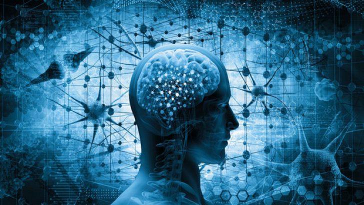 'Vücuttaki yağ oranı arttıkça beyin küçülüyor'