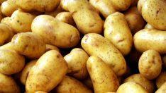 Fiyatı yükselen patates için İngiltere'den uyarı: Dikkat!