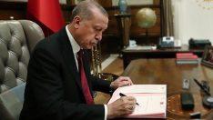 Rapor Cumhurbaşkanı Erdoğan'da! İşte seçimin kaderini belirleyecek kesim