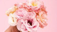 Anneler Günü için en güzel Anneler Günü sözleri! Resimli Anneler Günü mesajları, sözleri ve şiirleri