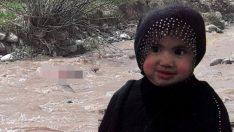 Kars'ta kaybolan 3 yaşındaki Nurcan'dan kötü haber!
