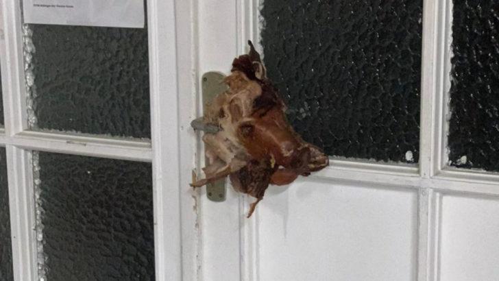 Almanya'da camiye ırkçı saldırı Yine domuz kafası