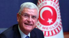 Eski AB Bakanı Volkan Bozkır, BM 75. Genel Kurul Başkanlığı'na seçildi