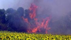 Yangına müdahalede ilk kez İHA kullanıldı