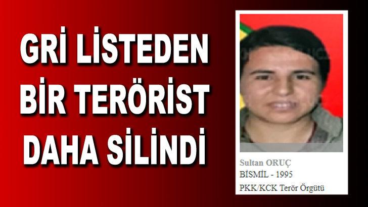 Gri listede aranan terörist Sultan Oruç öldürüldü