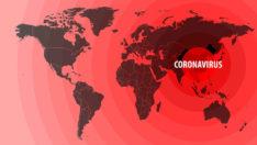 Koronavirüs dünyada 20 milyondan fazla kişiye enfekte etti